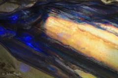 46. Saturnian Bone