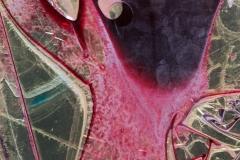 9. Zinc Meets Pink
