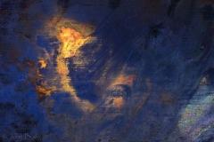 IMG_0741-CatNo310