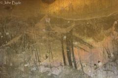 IMG_1537-OrientalAncestors